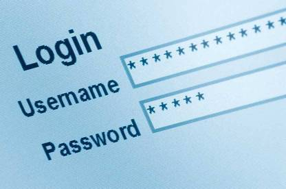 Essentially a password manager is a vault for all your passwords.