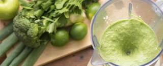 Consumer Reports Blenders Food Processors